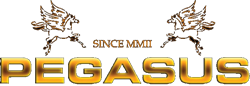 Nameštaj Pegasus Vranje – kožne garniture, ugaone garniture, fotelje, stolice, sofe