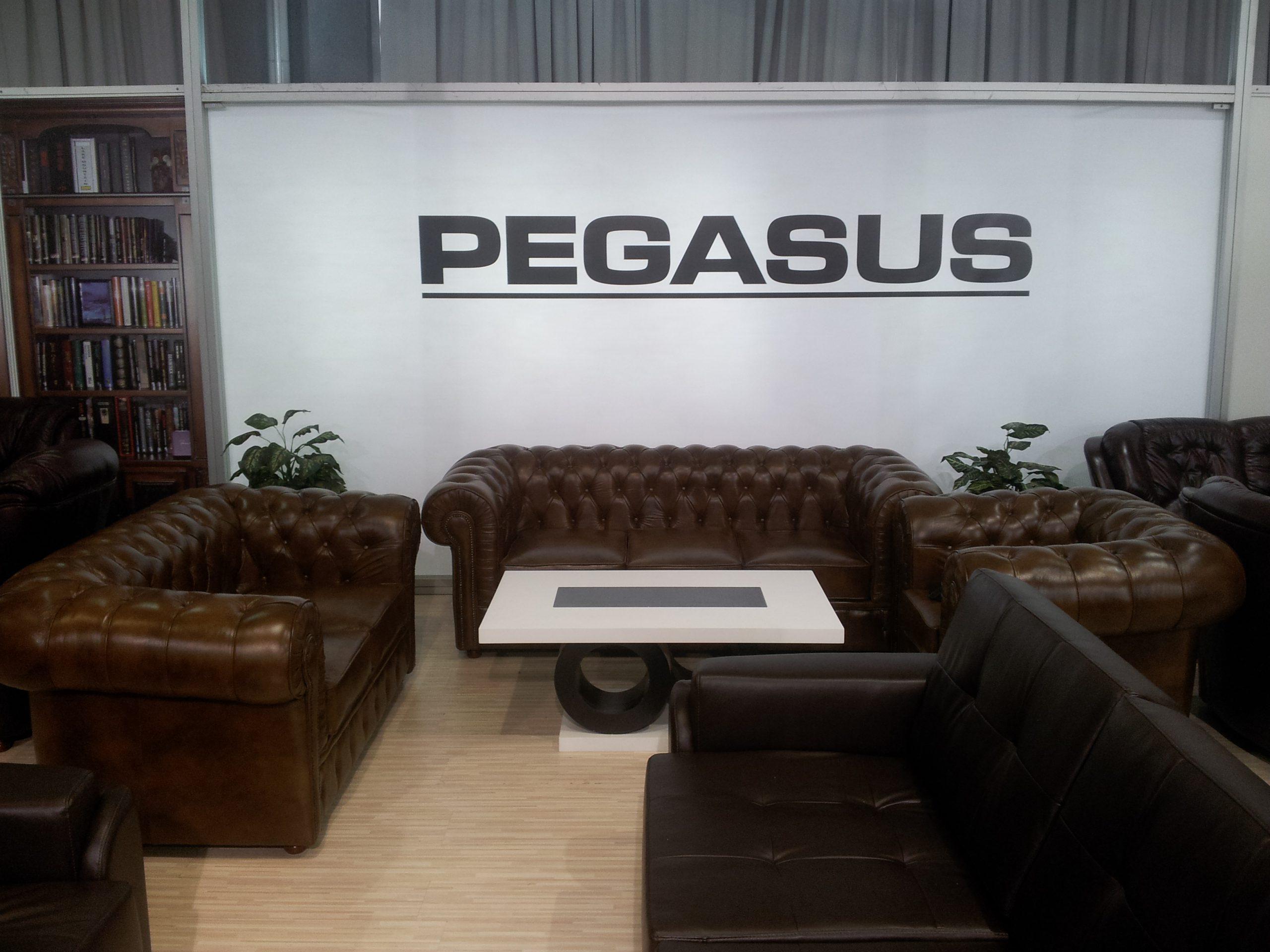 Pegasus na sajmu 2013.