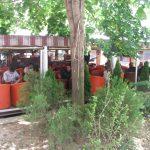 city cafe Vranje